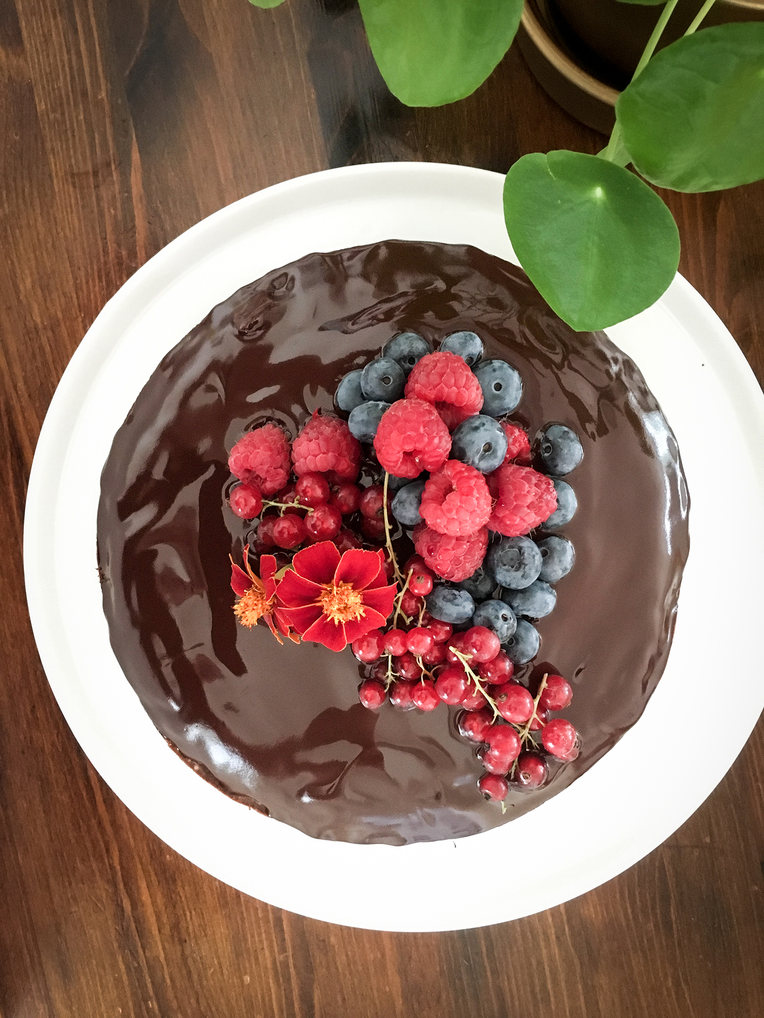 french chocolate cake in the table