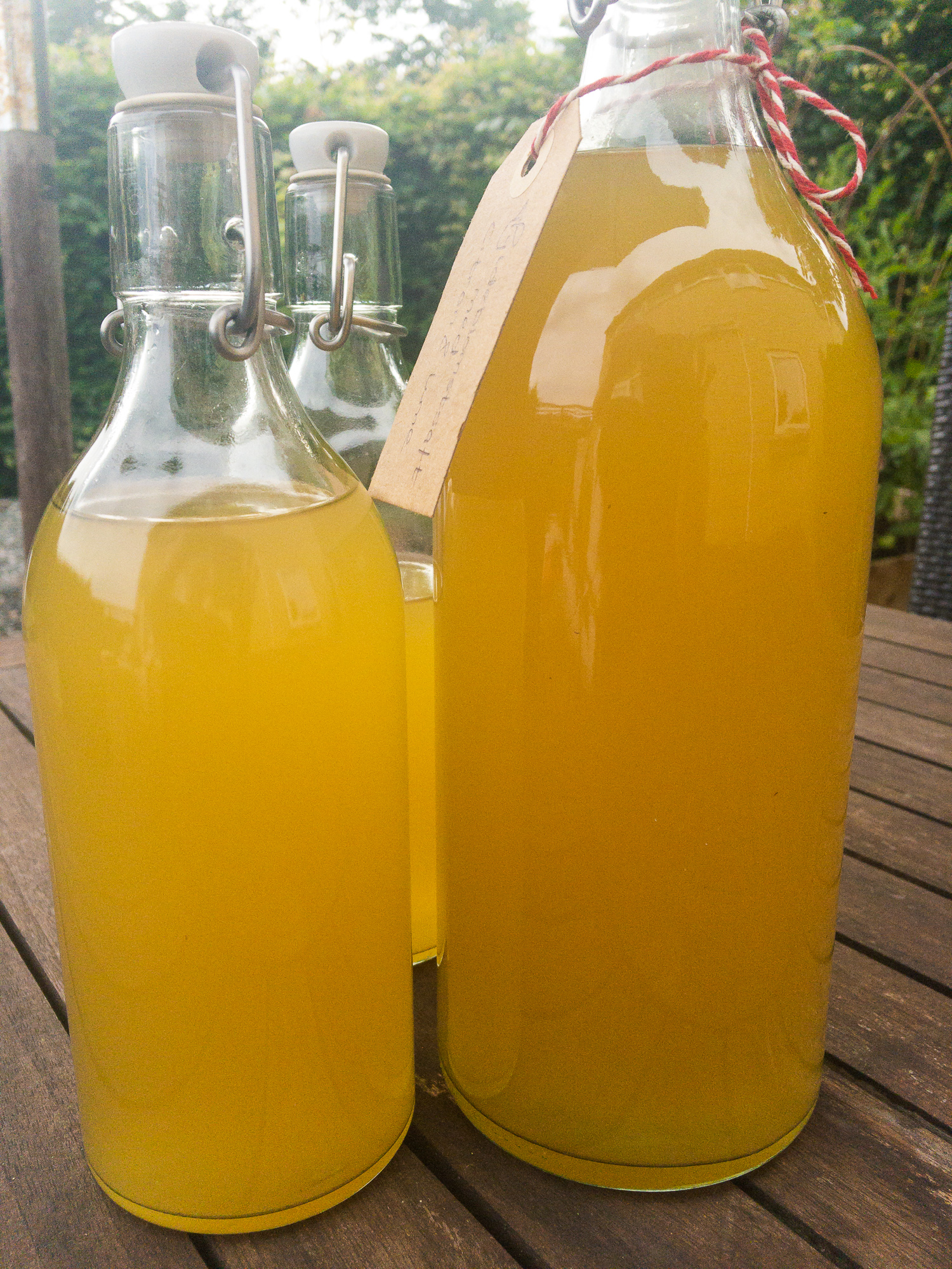 elderflower cordial in bottles